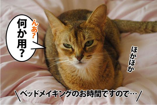 20111014_01.jpg