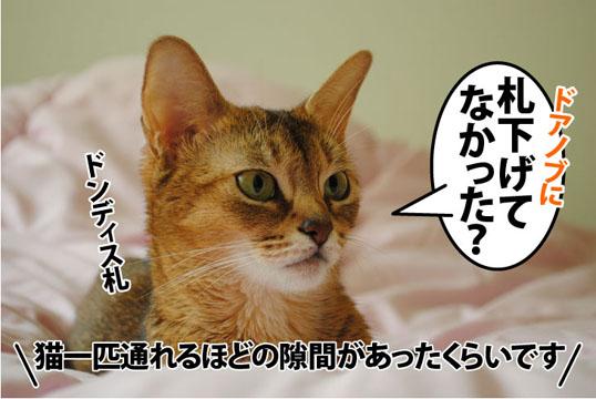 20111014_02.jpg