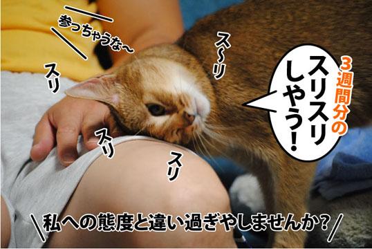 20111017_03.jpg