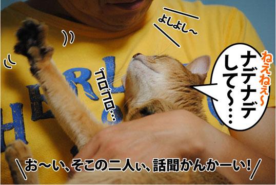 20111017_04.jpg