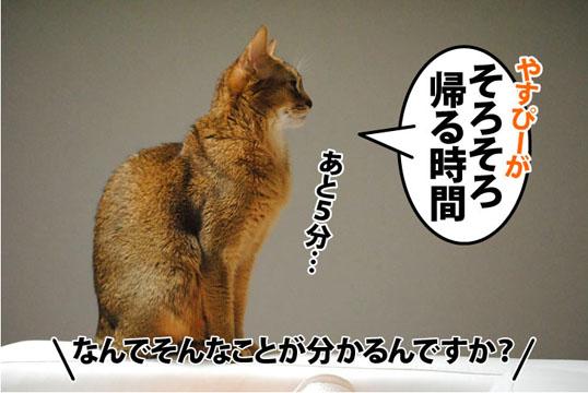 20111019_01.jpg