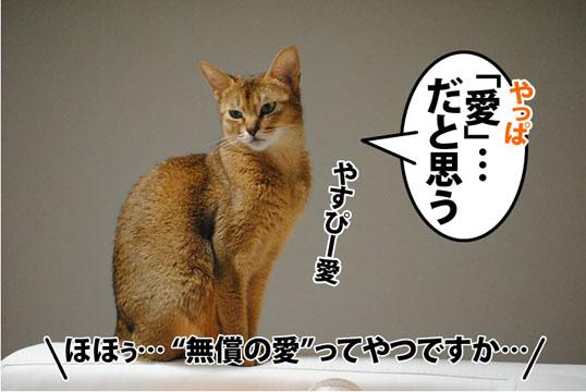 20111019_02.jpg