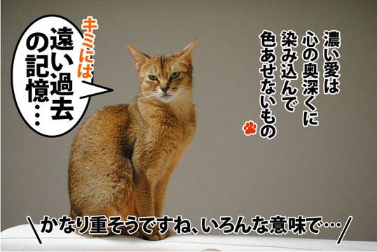 20111019_03.jpg