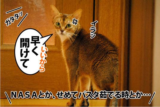 20111019_06.jpg