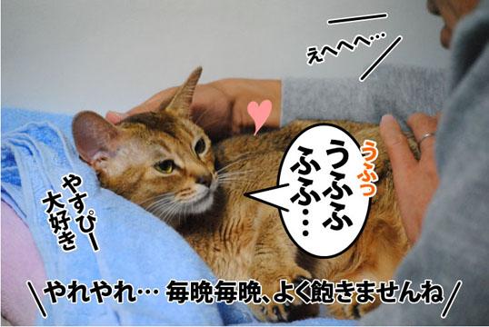20111022_03.jpg