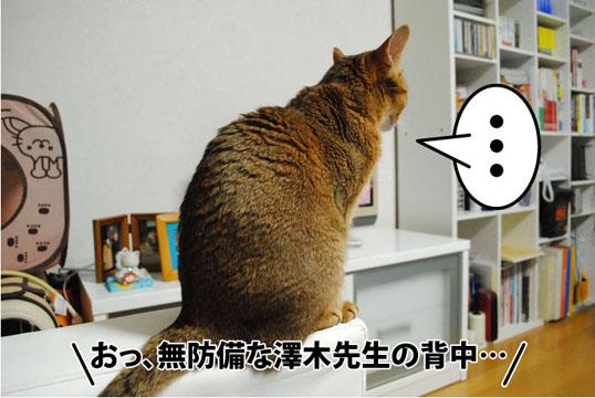 20111022_04.jpg