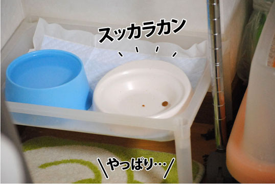 20111024_03.jpg