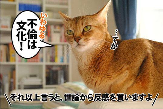 20111024_06.jpg