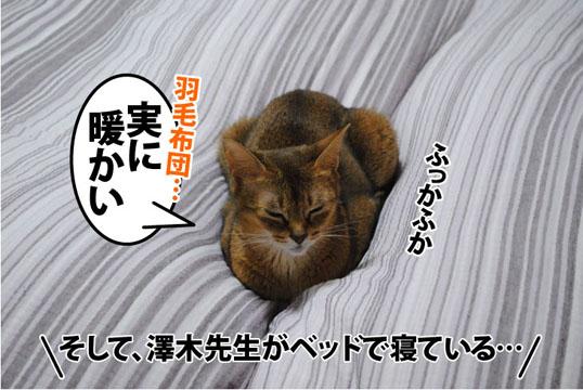 20111025_02.jpg
