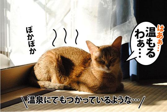 20111026_01.jpg