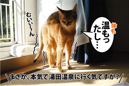 20111026_03.jpg
