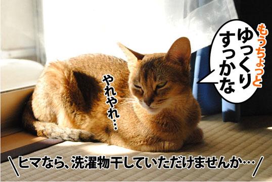 20111026_04.jpg
