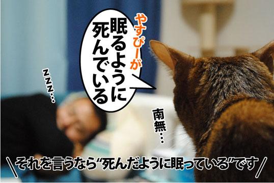 20111028_01.jpg