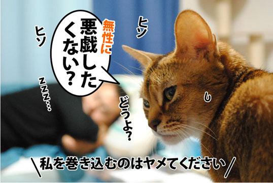 20111028_03.jpg