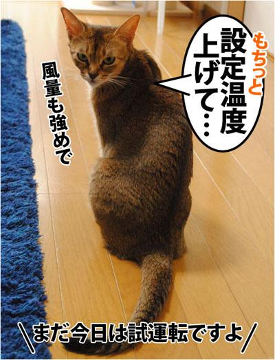 20111031_01.jpg