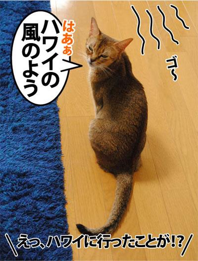 20111031_02.jpg