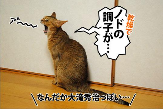20111101_01.jpg