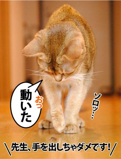 20111102_04.jpg