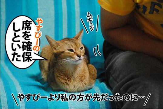 20111107_01.jpg