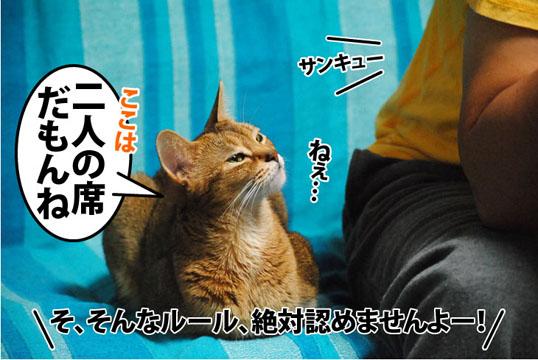 20111107_02.jpg
