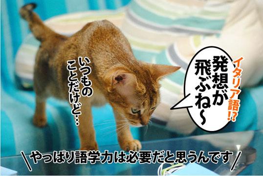 20111108_02.jpg