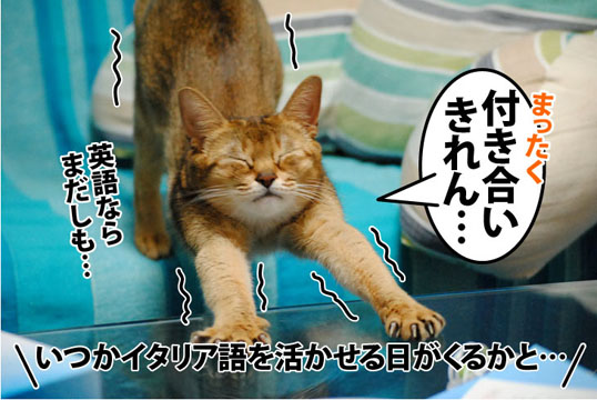 20111108_03.jpg