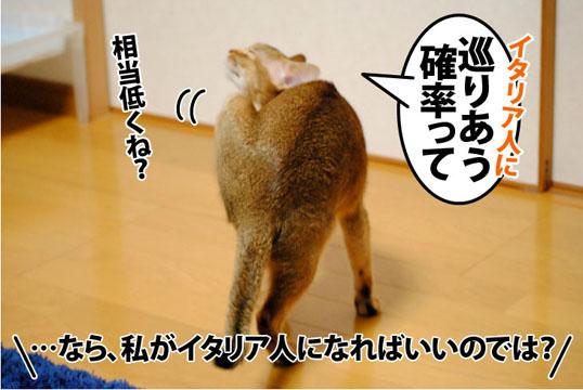 20111108_04.jpg