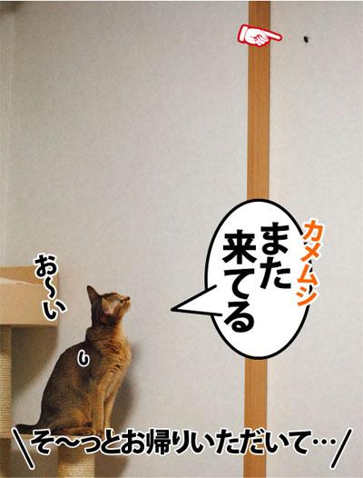 20111109_01.jpg