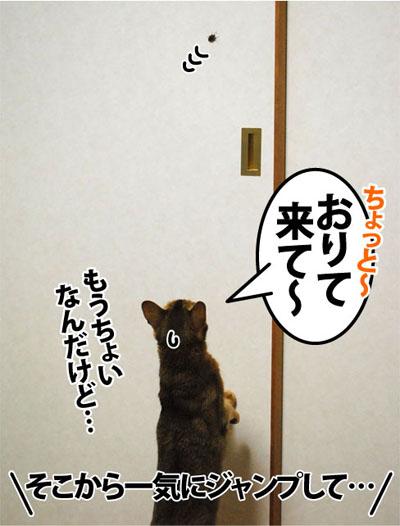 20111109_03.jpg