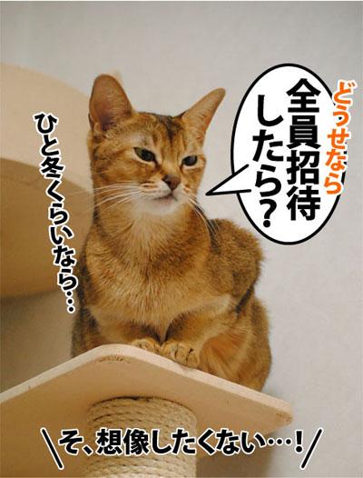 20111109_06.jpg