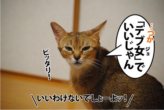 20111111_06.jpg