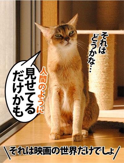 20111112_03.jpg