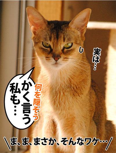 20111112_04.jpg