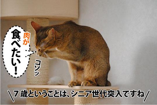 20111114_03.jpg