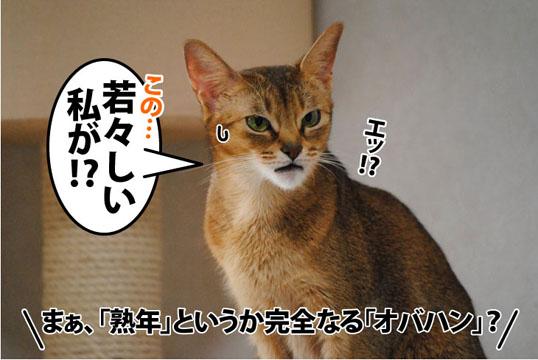 20111114_04.jpg