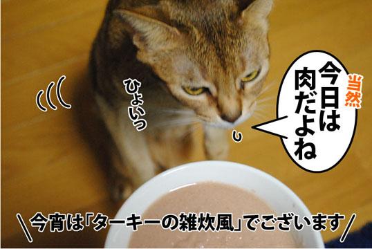 20111115_02.jpg