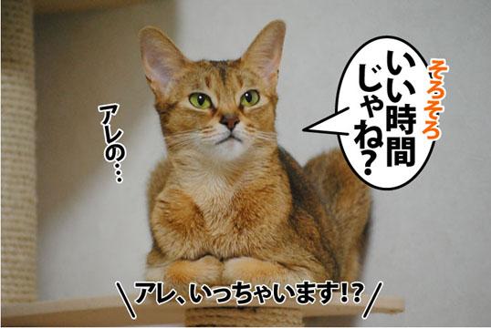 20111115_03.jpg