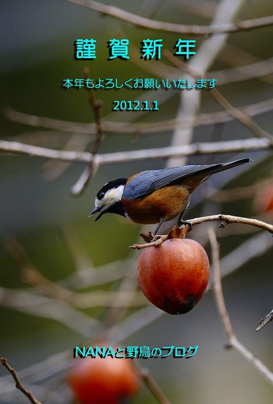 snengaブログ8656-3のコピー