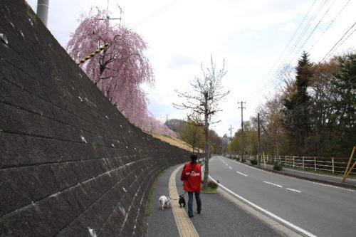 2011_0503_2.jpg