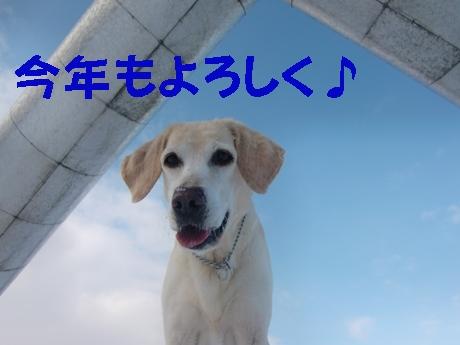 あけおめぇ~♪