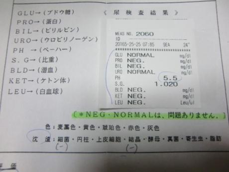 尿検査結果