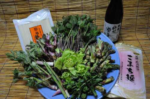 秋田山菜盛り合わせ