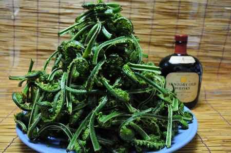 越後の山菜(こごみ)