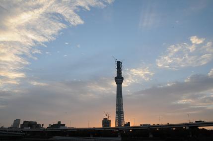 タワーの夜明け