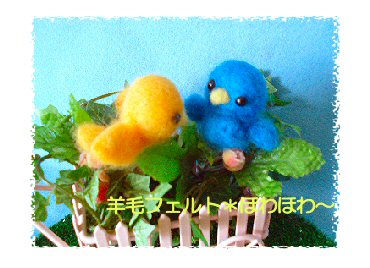 小鳥ちゃんたち