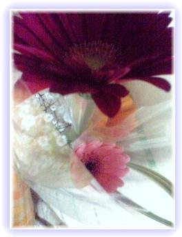 お花を見てると癒されるよね(* ̄― ̄)トオイメ?