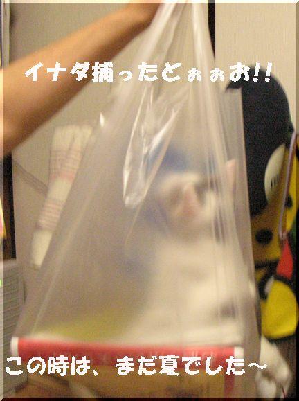 いいネタ提供ありがとう梅子部長o(^-^)o