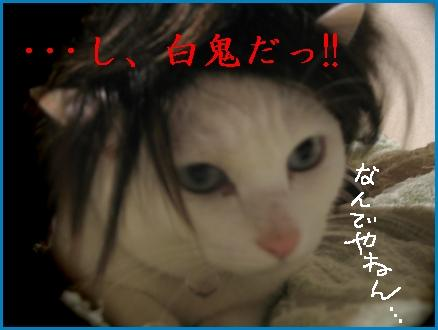 まさか、この画像使えるとは思わなかった.。゚+.(・∀・)゚+.゚