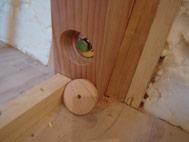 杉の木でボルトの穴を埋める