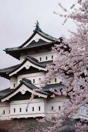 hisosaki03.jpg